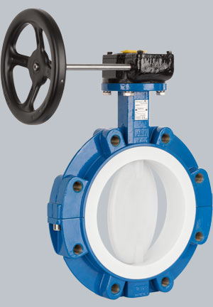 Image result for butterfly valves